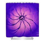 Flower-series-3 Shower Curtain