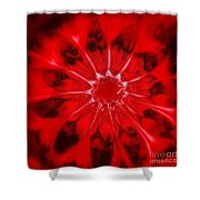 Flower-series-4 Shower Curtain