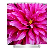 Flower Squared Shower Curtain