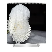 Flower With Snow Shower Curtain