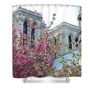 Flowering Notre Dame Shower Curtain