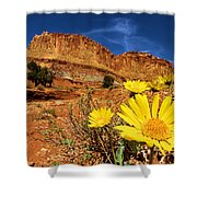 Flowers And Buttes Shower Curtain