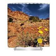 Flowers And Canyons Shower Curtain