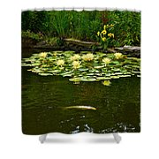 Flowers And Koi Shower Curtain