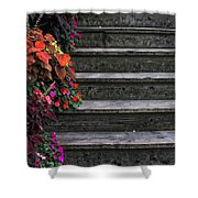 Flowers And Steps Shower Curtain