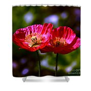 Flowers Are For Fun Shower Curtain