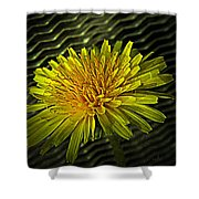 Flowers Are Weeds With Respect Shower Curtain