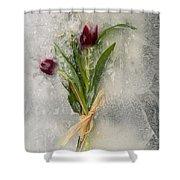 Flowers Frozen In Ice Shower Curtain