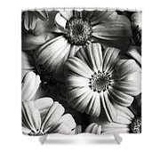 Flowers In Sepia Tone Shower Curtain