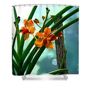Flowers In Spring Shower Curtain