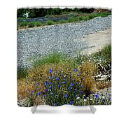 Flowers In The Gold Hill Desert Shower Curtain