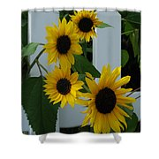 Flowers On A Fence Shower Curtain