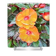 Flowers Plastic Or Real  Shower Curtain