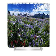 Flowers With Tattosh Mountains, Mt Shower Curtain
