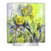 Flowery Abstraction Shower Curtain