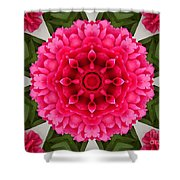 Flowery Creation Shower Curtain