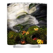 Flowing Stream  Shower Curtain