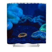 Fluorescent Corals Shower Curtain