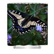 Fly Butterfly Fly Shower Curtain