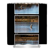 Fly Fishing Triptych Black Background Shower Curtain