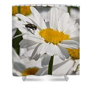 Fly In The Flower Shower Curtain