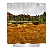 Fly Pond On Rondaxe Road Shower Curtain