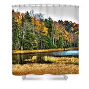 Fly Pond On Rondaxe Road II Shower Curtain