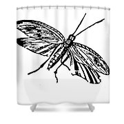 Flying Insect Shower Curtain