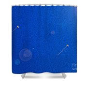 Flying Kites  Shower Curtain
