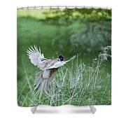 Flying Pheasant Shower Curtain