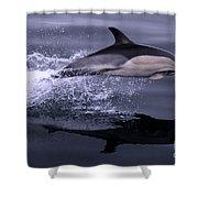 Flying Porpoise Shower Curtain