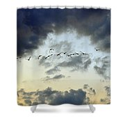 Flying South For The Winter Shower Curtain