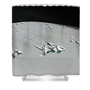Flying Squirrel. Mysterious Shapes From Raindrops 1 Shower Curtain