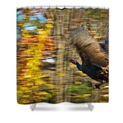 Flying Wild Turkey Escapes Thanksgiving Shower Curtain