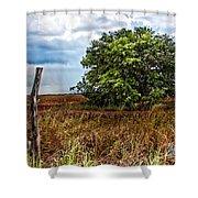 Fm 162  II Shower Curtain