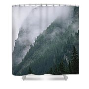 Fog Blankets Spruce Trees  In Yoho Shower Curtain