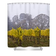 Fog In The Fall Shower Curtain
