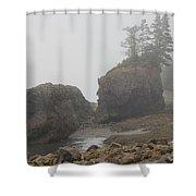 Fogger Shower Curtain