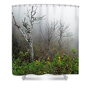 Foggy Day On The Blueridge Shower Curtain