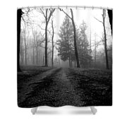 Foggy Lane By The Lake Shower Curtain