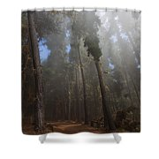 Foggy Poli Poli Shower Curtain