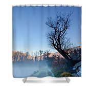 Foggy Road With A Tree Shower Curtain