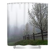 Foggy Trees In The Valley Shower Curtain