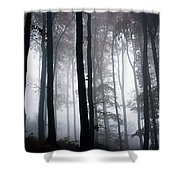 Foggy Woods Ireland Shower Curtain