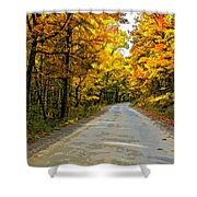 Follow The Yellow Leafed Road Painted Shower Curtain
