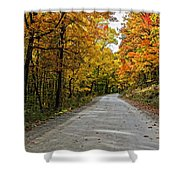 Follow The Yellow Leafed Road Shower Curtain