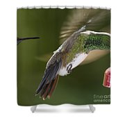 Follow-up Shower Curtain
