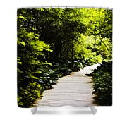 Follow Your Path Shower Curtain