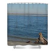 Folly And Morris Island Shower Curtain