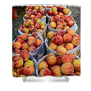 Food - Harvested Peaches Shower Curtain